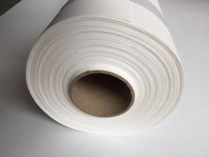 La impresión de inyección de tinta de lona de poliéster impermeable 240g