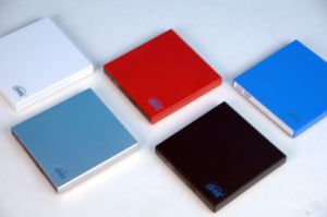 휴대용 쟁반 짐 DVD 작가 (DS-8A4S)