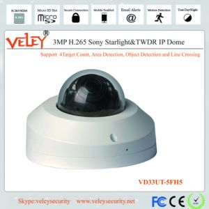 Mini Cámara domo de red domo CCTV Cámaras IP CCTV Cámara