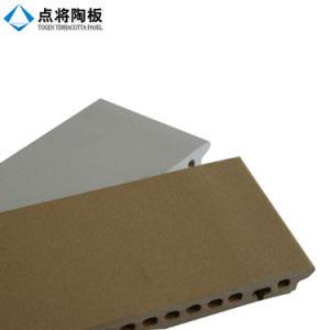 Revêtement décoratif de façade de terre cuite de 30mm avec le système s'arrêtant sec