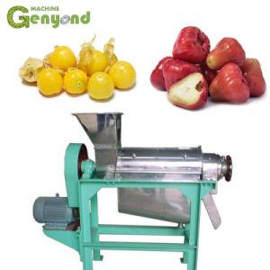Cire de goyave Apple Cape Gooseberry extrait concentré de jus en poudre la machine
