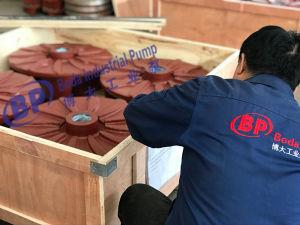 Pezzi di ricambio di gomma della pompa per la pompa dei residui