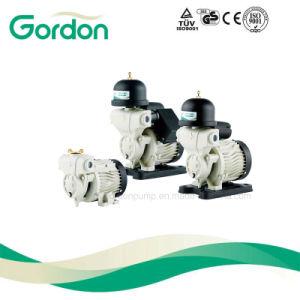 Ga101 Self-Priming intérieur de la pompe d'eau automatique avec rotor en laiton
