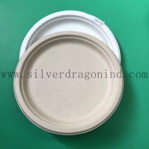 Bac à papier de pâte de canne à sucre compostables pour le parti