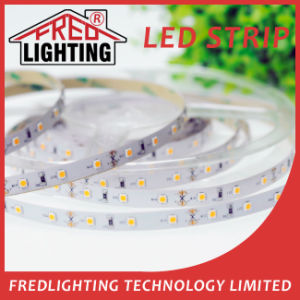 5050 300 LED Impermeable IP65 Cinta LED tira flexible de luz