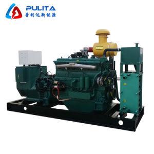 Автоматическая цифровое управление ТЭЦ 100 квт Silent биогаза генератора