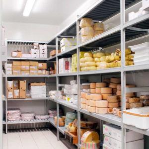 Küche-Aluminiumpolypropylen-Gefriermaschine-Zahnstangen-Kühlraum-Fach