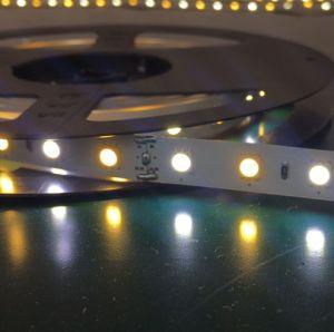 3000+6000SMD K5050 de color doble TIRA DE LEDS flexible