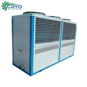 Copeland role a unidade de condensação no exterior da unidade de condensação Air-Cooled para armazenamento a frio