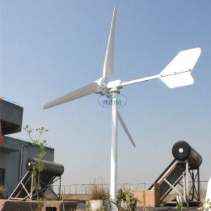 2000W maximale Wind-Turbine der Energien-3000W mit 3 Schaufeln