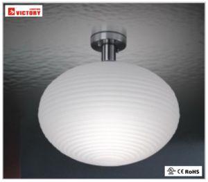 Commercial&Indoorの照明LED現代天井の円形の軽いランプ