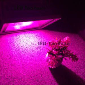 Luz LED para la cría de animales en todo el espectro de 30W 380-840nm