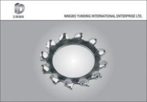 Les Chinois de haute qualité Ss304/316 Rondelle plate en acier inoxydable, d'autres et ainsi de suite la rondelle élastique