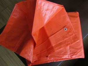 Wasserdichtes Plastiktuch PET Plane-Blatt