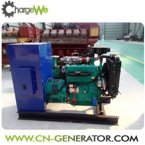 Tipo a tre fasi generatori dell'uscita di CA del biogas di 50Hz/60Hz 30kw da residuo animale