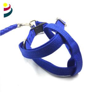 Trenzado de azul y correa Collar perro correas