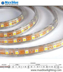 Tensione AC100V/220V 3528SMD LED Strip Light