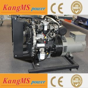 Grupo electrógeno diesel por Kins Precio 40kVA Stanford motor marca motor generador generador importado