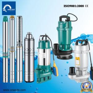 versenkbare tiefe Pumpe des Quellwasser-4SD, elektrische Pumpen, Hochdruckpumpe, Bewässerung-Pumpe