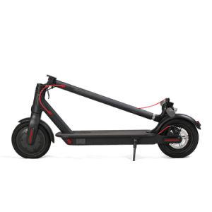 Novo Pontapé Dobrável Electric Scooter, 500W e 36V