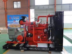 Cer ISO 50 Kilowatt-Biogas-Generator