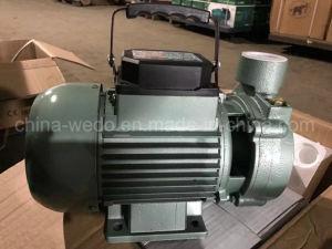 Высокое качество центробежный водяной насос с электроприводом (1DK-20)