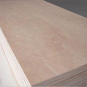 Lamelliertes Commerical Furnierholz für Nepal-Markt