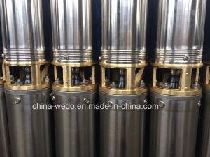 4SD elektrische Pomp Met duikvermogen, Diepe goed Pomp, de Pomp van het Roestvrij staal diep goed
