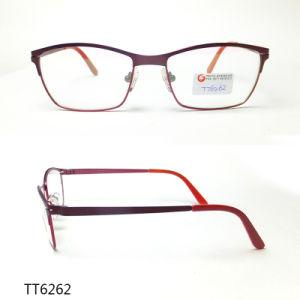 Het elegante Optische Frame van het Titanium van de Manier (TT 6262)