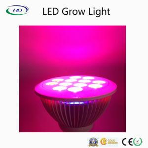 LED de 12 W crescer Lâmpada para culturas hidropónicas