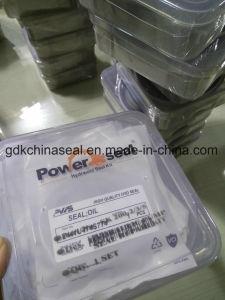 De Uitrusting van de Verbinding van de hydraulische Pomp voor Kobelco Sk 2002/3/5