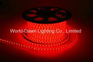 110V, 220V Corda de LED de alto brilho de luz para a cor vermelha
