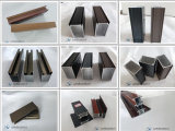 Finestra e portello lucidati/profilo del rivestimento per l'espulsione di alluminio
