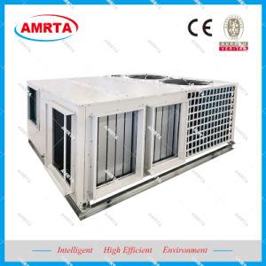 Economische Cyclus/de Vrije KoelDak Verpakte Centrale Airconditioner van de Eenheid