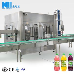 Het Vullen van het Sap van de Fles van het glas de Apparatuur van de Machine voor Verkoop