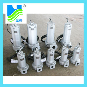 L'ensemble de la pompe en acier inoxydable (AS/AV/WQ)