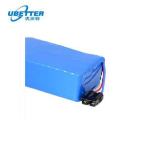 Ciclo de profunda LiFePO4 Bateria de Lítio 48V 20ah para Carro Eléctrico