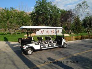 6 Lugares para carros de golfe Campo de Golfe com Box
