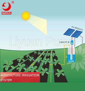 4 反干ばつの太陽水ポンプ、太陽浸水許容ポンプ