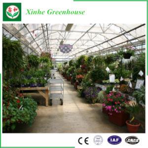 La agricultura invernadero de plástico para la Flor
