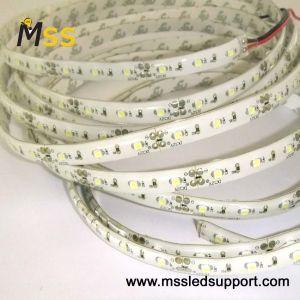 3528 LED impermeável tira flexível MSS (IP64-F300-3528W-IP64)