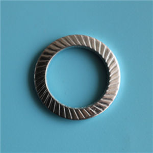 9250 S22 de la rondelle de sécurité en acier inoxydable