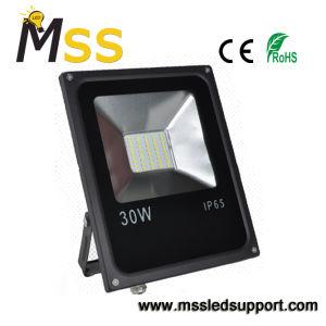 Lampada di inondazione esterna economizzatrice d'energia del giardino LED di paesaggio 30W della Cina AC220V - lampada di inondazione della Cina LED, proiettore del LED