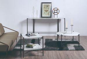 Mesa de café de mármol de la naturaleza establece con base de bastidor de acero inoxidable