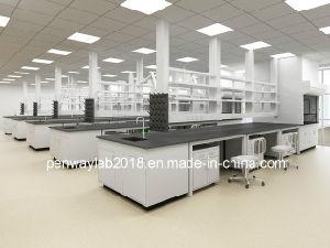 Meubilair het van uitstekende kwaliteit van het Laboratorium met Gootsteen
