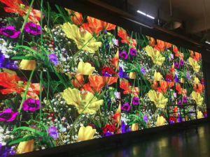 علبيّة عمليّة بيع مساء [فولّ كلور] [هد] داخليّة [لد] [ديسبلي سكرين] جدار مع ضوء فائقة (576*576)