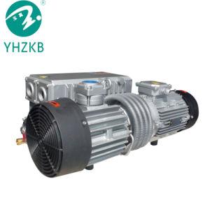 pulsometro rotativo dell'aletta 0.75kw/pompa di aria