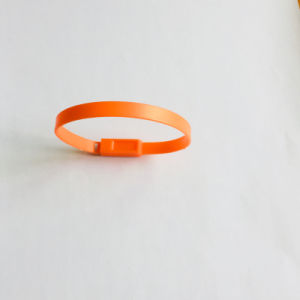 Sello Plastico De Seguridad de Contenedores de plástico Precinto de seguridad (KD-100)