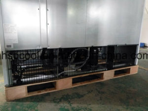 Ventilación LED Anti-Fog puerta de vidrio congelador Hipermercado Equipo