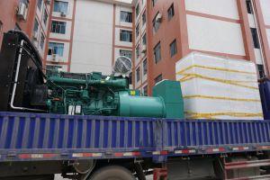250квт электроэнергии / генераторной установки с Volvo Tad941ge двигатель